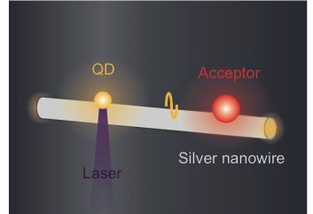 Energy transfer between fluorescent emitters mediated by single plasmons