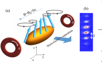 Collective Spin Modes of a Trapped Quantum Ferrofluid