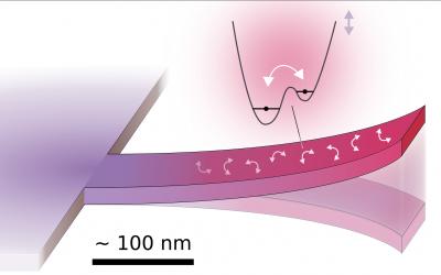 Lumière sur la dissipation nanomécanique